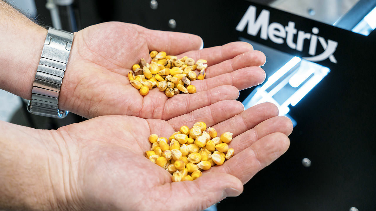The top seed companies in the U.S. divide acceptable seeds from those that do not meet color or size standards using software and hardware solutions from VMek.